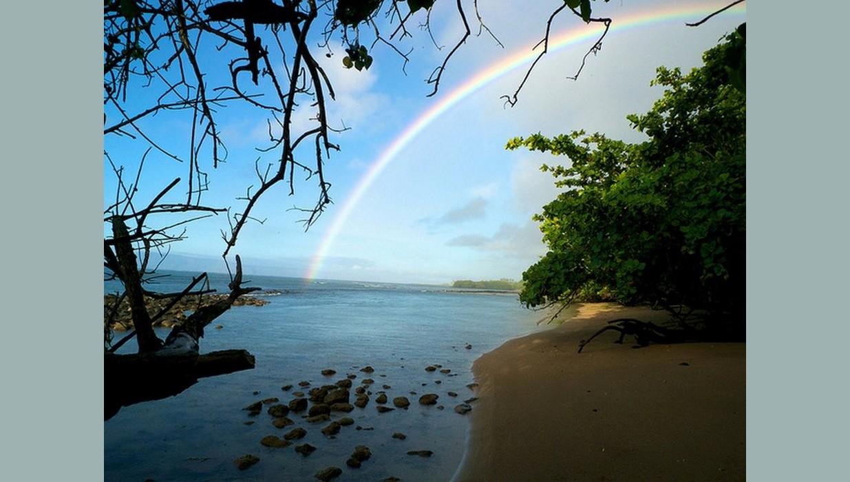 Molokai rainbow stream.jpg